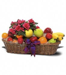 Fruit and Blooming from Schultz Florists, flower delivery in Chicago