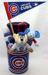 Cubbie Baby from Schultz Florists, flower delivery in Chicago