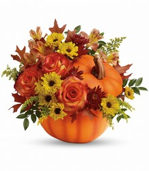Teleflora's Warm Fall Wishes Bouquet from Schultz Florists, flower delivery in Chicago