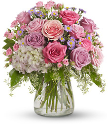 Your Light Shines from Schultz Florists, flower delivery in Chicago