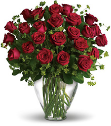 Two Dozen roses from Schultz Florists, flower delivery in Chicago