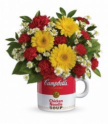 Campbell's Healthy Wishes by Teleflora from Schultz Florists, flower delivery in Chicago