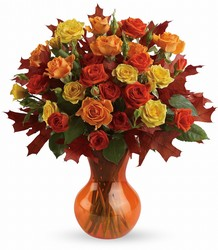 Teleflora's Fabulous Fall Roses from Schultz Florists, flower delivery in Chicago