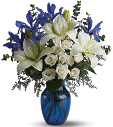 Blue Horizons from Schultz Florists, flower delivery in Chicago