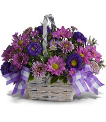 Daisy Day Dreams from Schultz Florists, flower delivery in Chicago